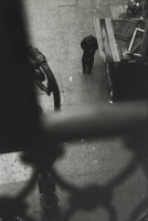 http://www.bernalespacio.com/files/gimgs/th-57_Saul Leiter From the El with Bob Weaver c_ 1955.jpg